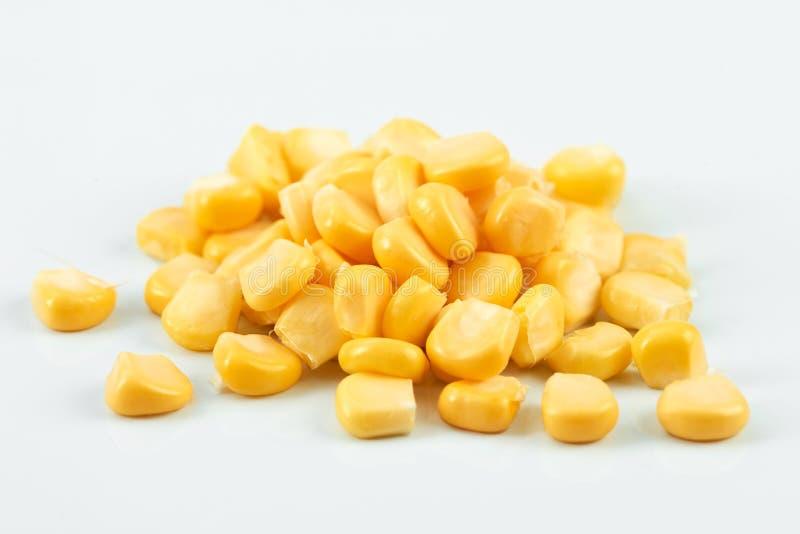 Maïs doux photos stock