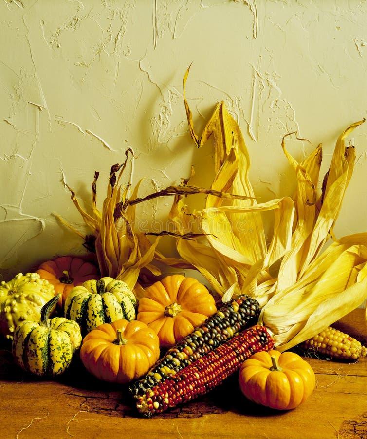 Maïs et courges photos stock