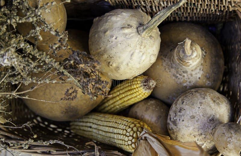 Maïs et potirons dans un panier traditionnel photos stock