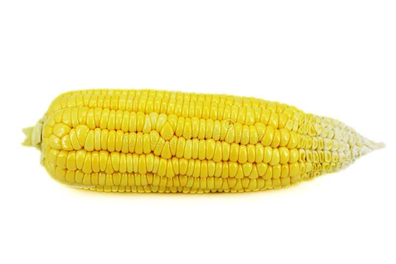 Maïs frais image stock