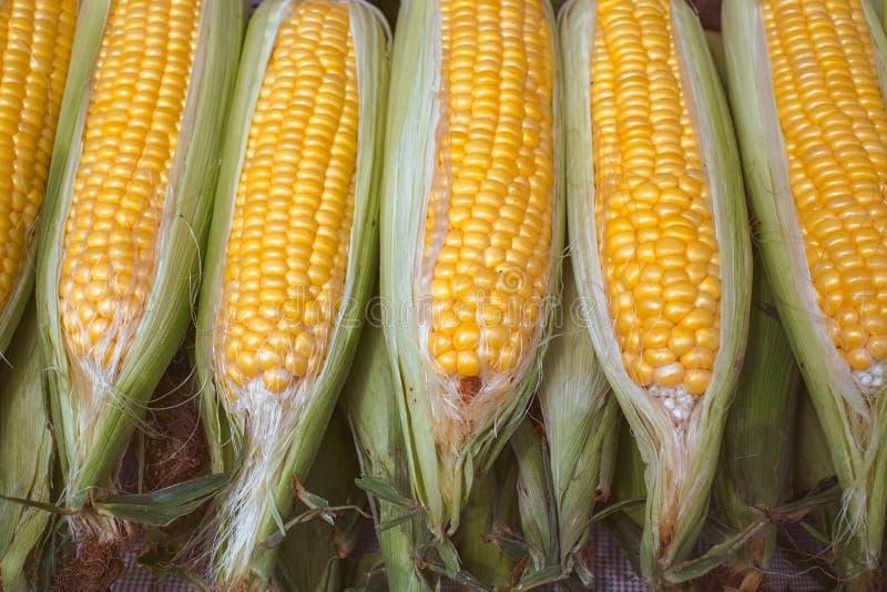 Maïs frais cru pour bouillir à la stalle du marché image libre de droits