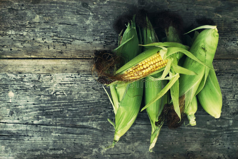 Maïs frais d'épis photos stock