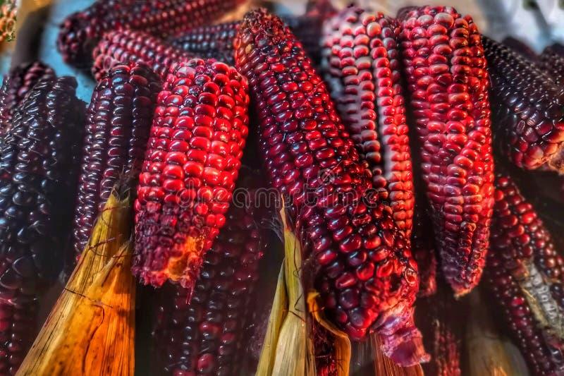 Maïs frais de riz collant images stock