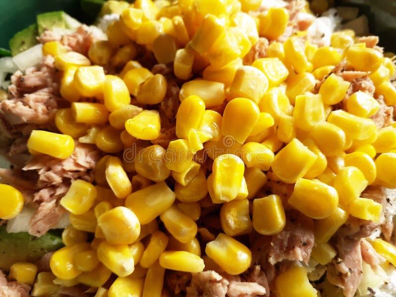 Maïs jaune et thon rose pour la salade, fond de nourriture photos stock