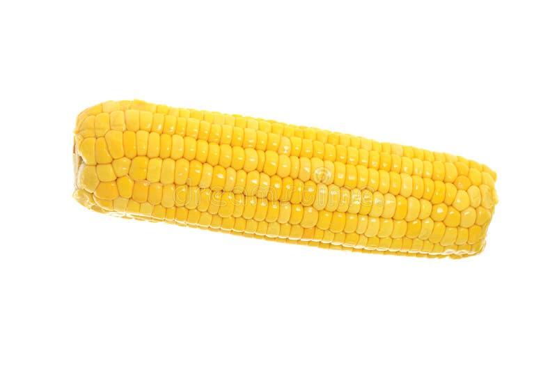 Maïs jaune mûr d'isolement sur le blanc photos libres de droits