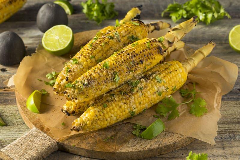 Maïs mexicain fait maison grillé tout entier de rue d'Elote photo stock