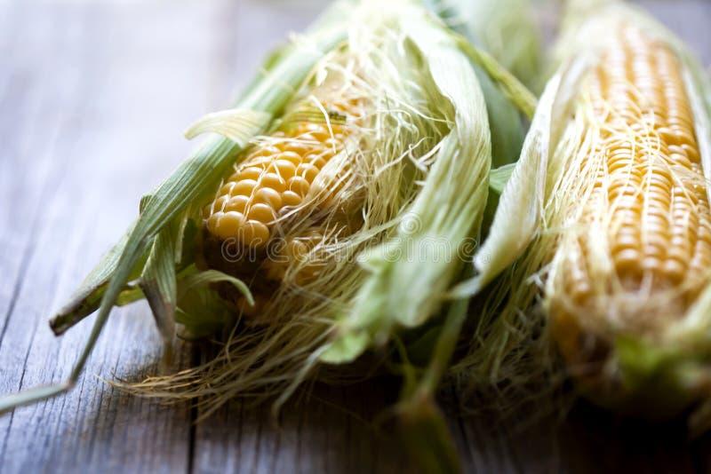 Maïs organique frais sur une table en bois photos stock
