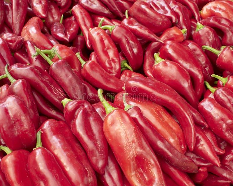 Maïs-poivres rouges de Creta images libres de droits