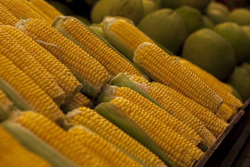maïsgroente voor het bereiden van salades en schotels, gezond en gezond voedsel, ook voor vegataarse delicatesse stock fotografie
