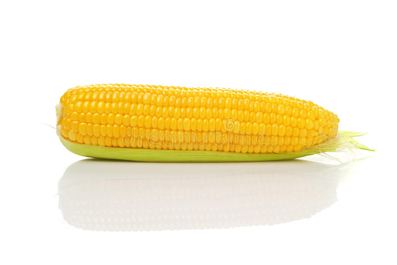 Maïskolf op Witte Achtergrond stock foto