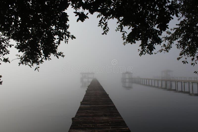 Mañana brumosa del río imagenes de archivo