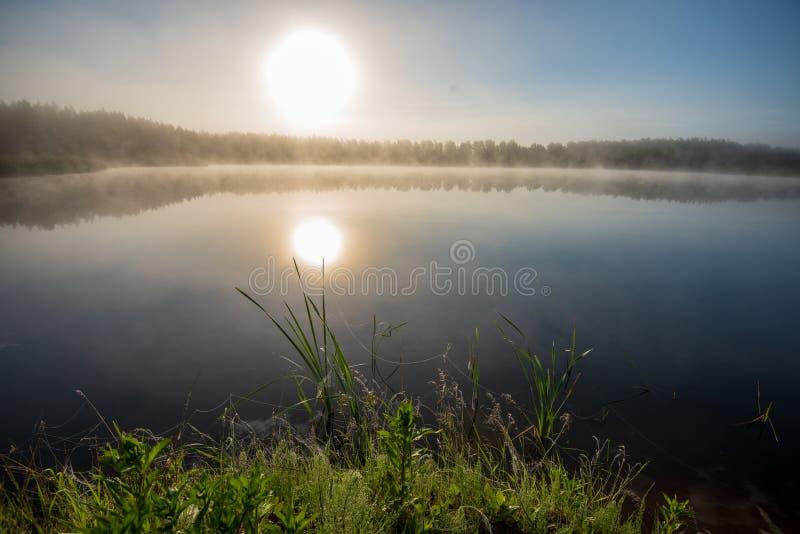 Mañana brumosa por el lago foto de archivo
