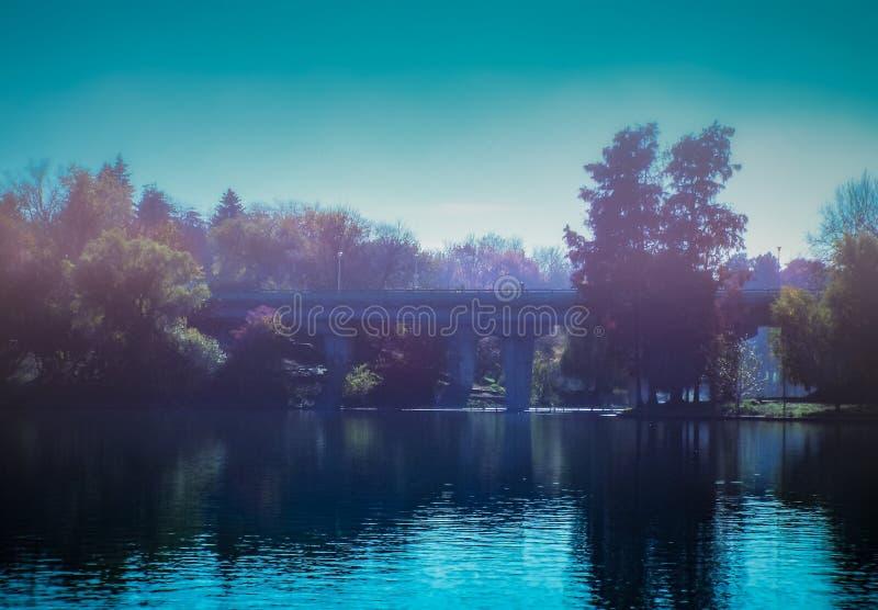 mañana de niebla azul overfiltered del otoño del artistivc en el lago fotos de archivo