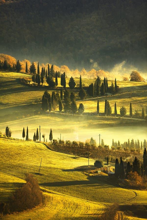 Mañana de niebla de Toscana, tierras de labrantío y árboles de ciprés Italia imágenes de archivo libres de regalías
