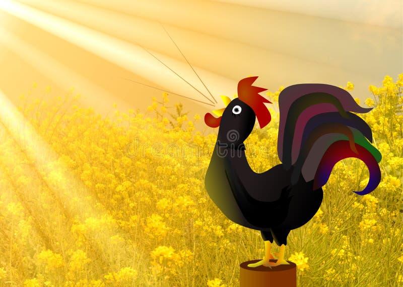 Mañana de oro de cacareo de la sol del gallo stock de ilustración