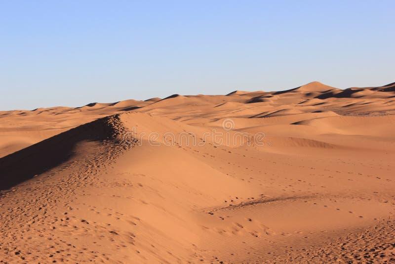 Mañana del desierto imagen de archivo