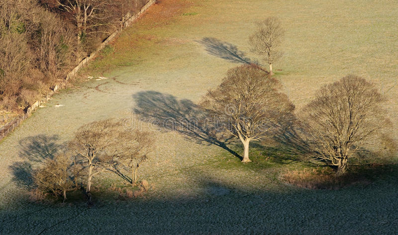 Mañana del invierno en las llanuras del sur fotos de archivo