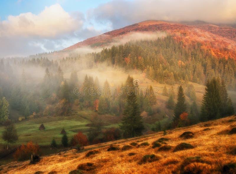 Mañana del otoño Amanecer brumoso en los Cárpatos foto de archivo
