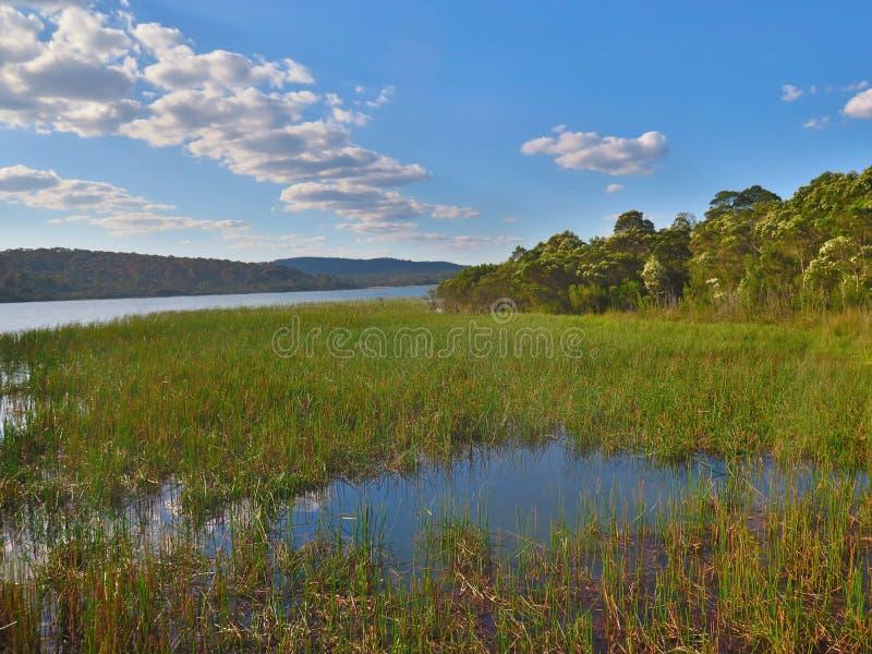 Mañana en el lago imagen de archivo libre de regalías