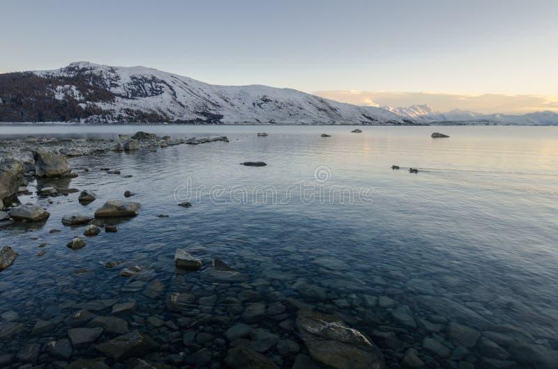 Mañana en el lago Tekapo imagen de archivo libre de regalías