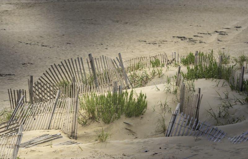 Mañana en la playa en cabeza de las quejas imágenes de archivo libres de regalías