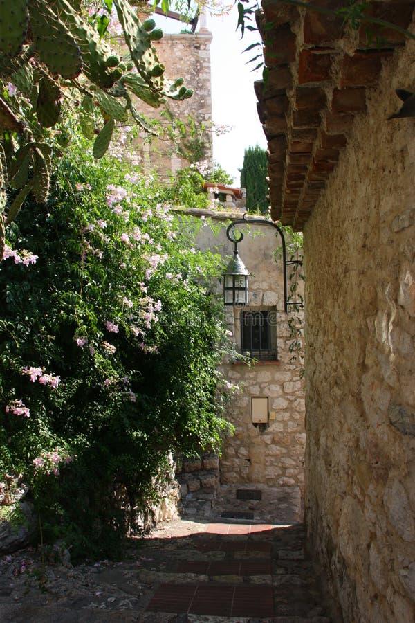 Mañana en Provence fotografía de archivo libre de regalías