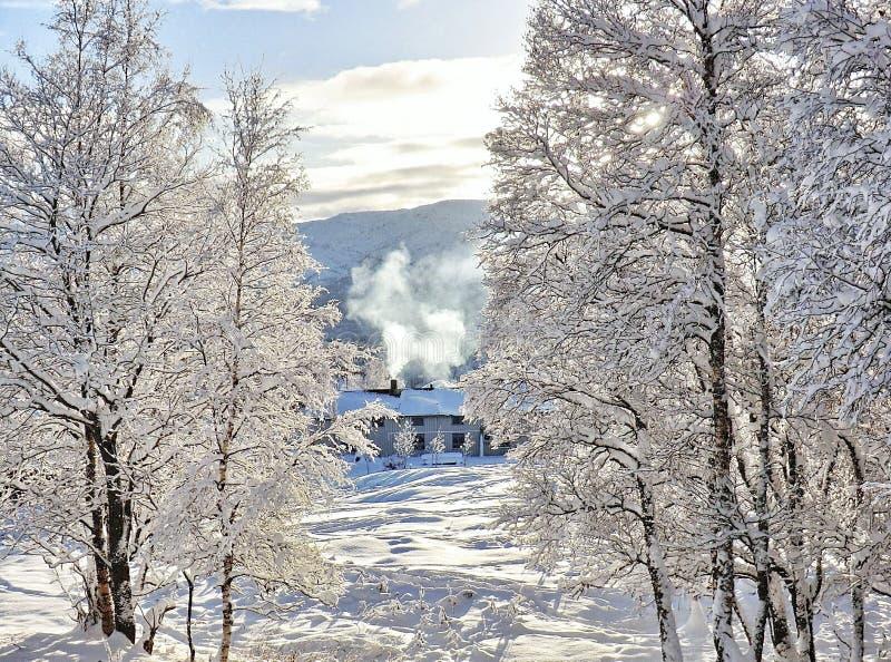 Mañana fría del invierno fotos de archivo