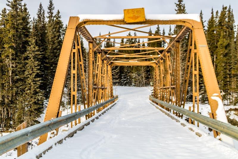Mañana misteriosa del invierno, zona de recreo provincial del fantasma del norte, Alberta, Canadá fotografía de archivo libre de regalías