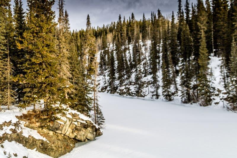 Mañana misteriosa del invierno, zona de recreo provincial del fantasma del norte, Alberta, Canadá imagen de archivo