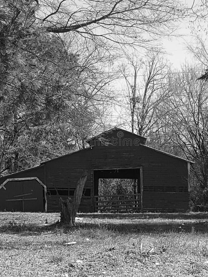 Mañana pacífica BW del granero viejo foto de archivo
