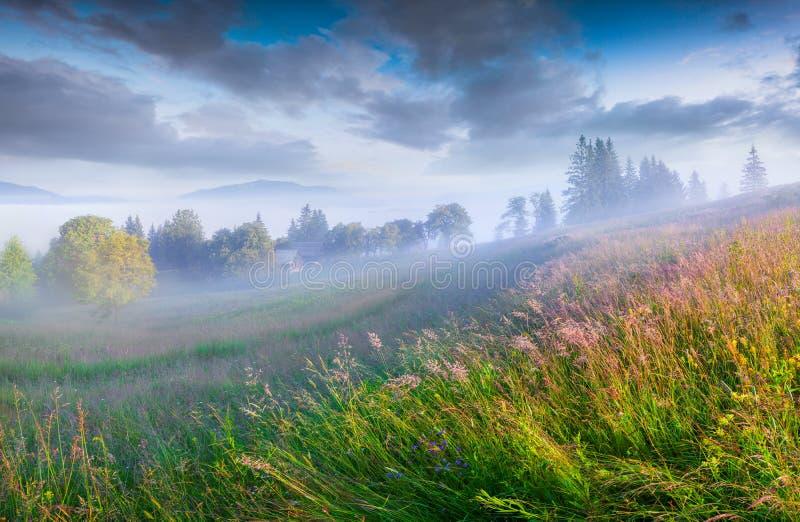 Mañana soleada del verano en el pueblo de montaña de niebla imágenes de archivo libres de regalías