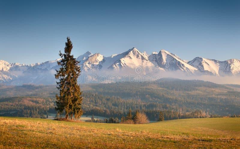 Mañana soleada en montañas fotografía de archivo libre de regalías