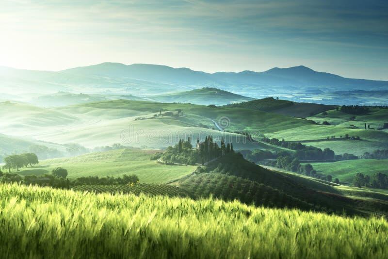 Mañana temprana de la primavera en Toscana, Italia imagen de archivo