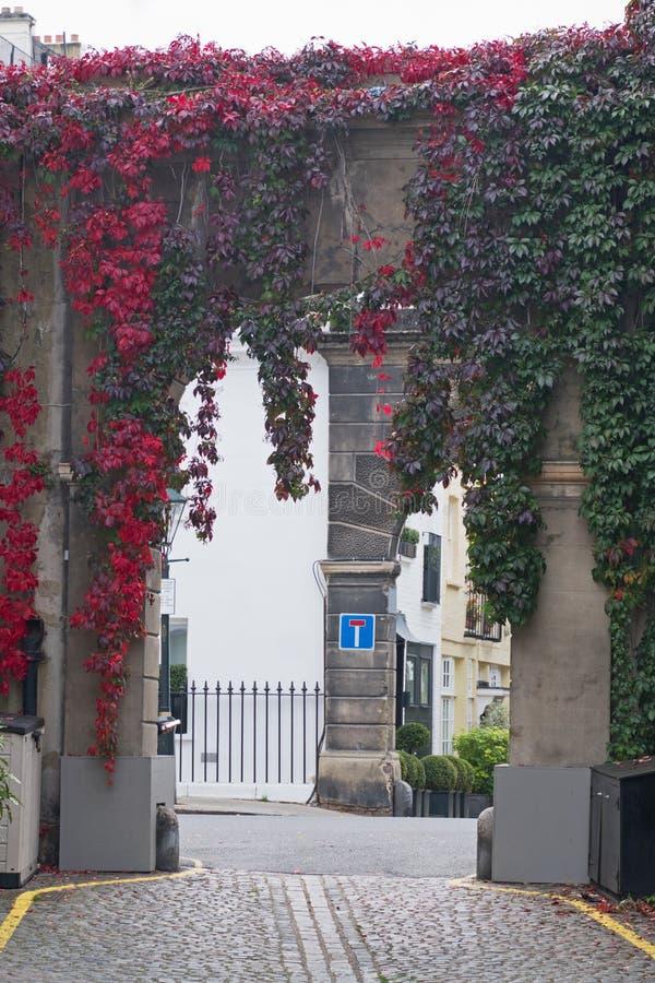 Maúlla la arcada en Londres con las hojas que enrojecen en otoño foto de archivo libre de regalías
