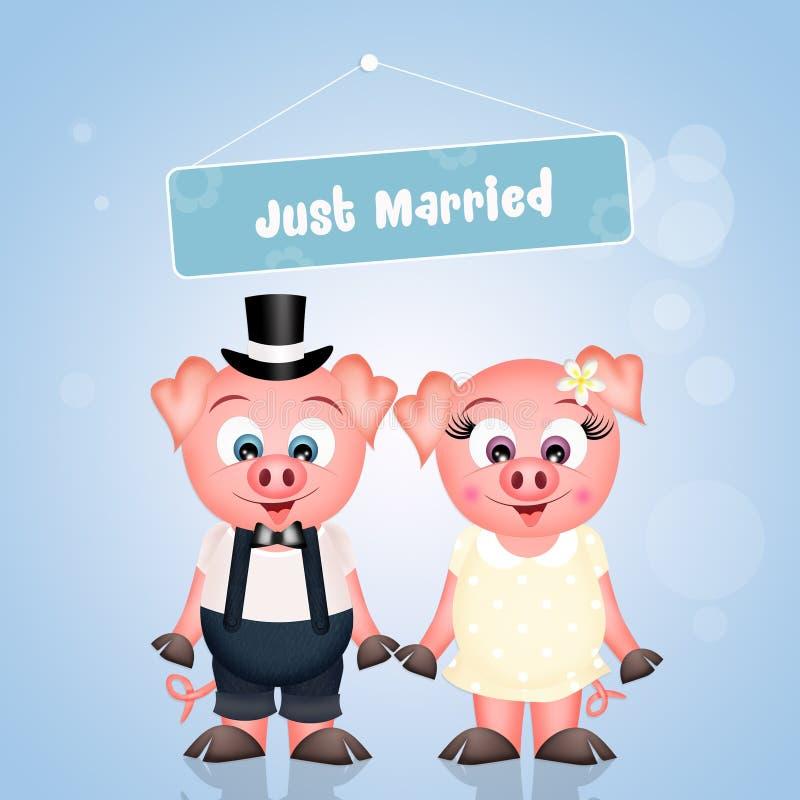 Małżeństwo świnie ilustracji