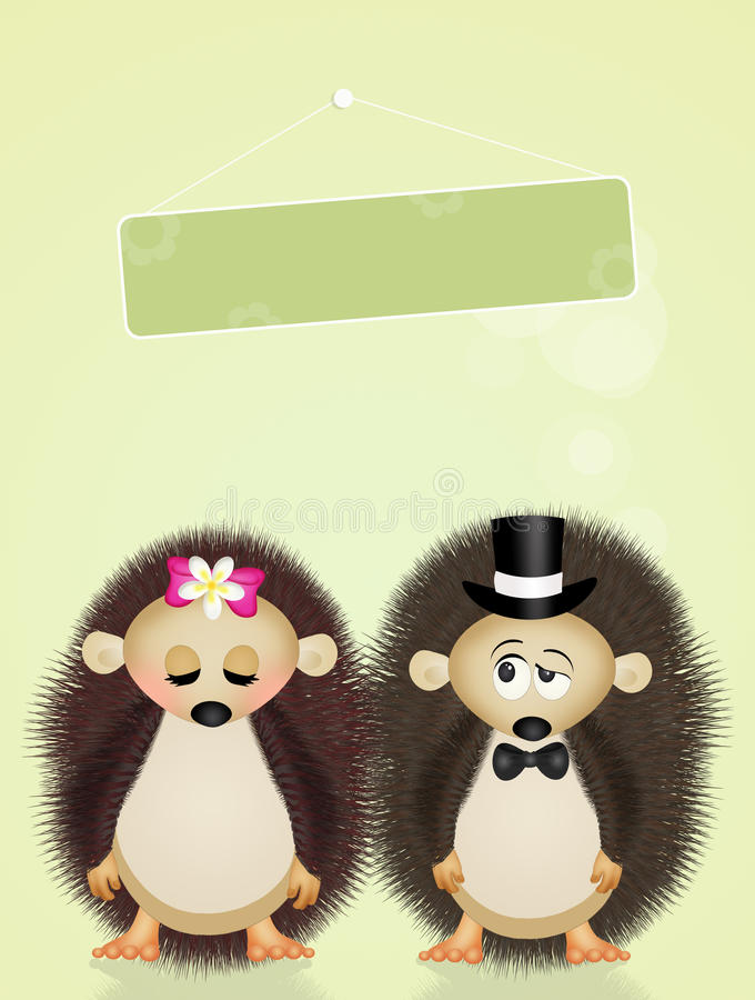 Małżeństwo jeże ilustracja wektor