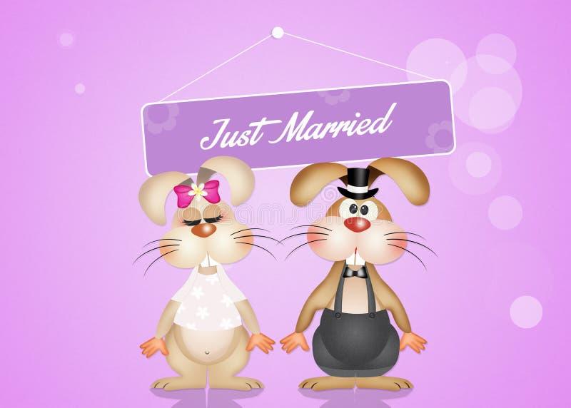 Małżeństwo króliki ilustracji