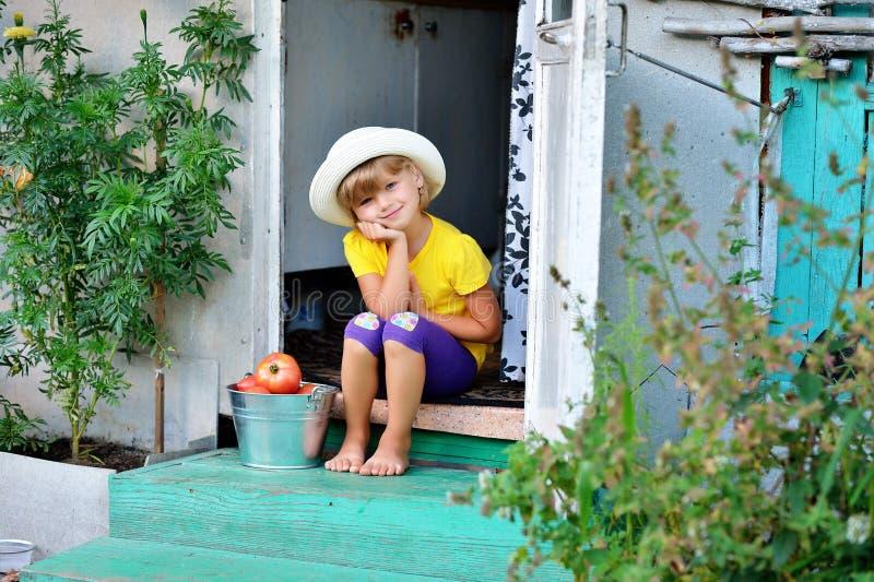Mała, ładna dziewczyna w kapeluszu, zbierał żniwo dojrzały czerwony Tom zdjęcia stock
