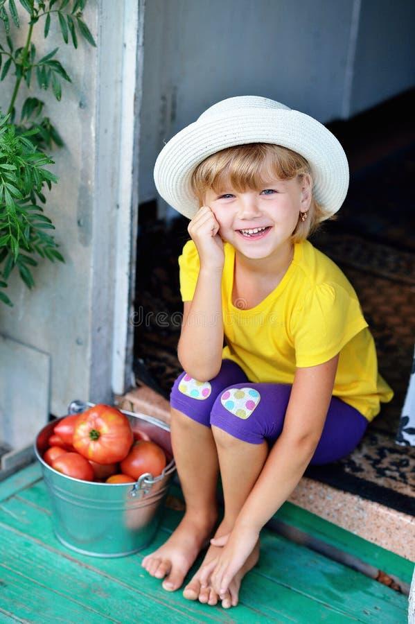Mała, ładna dziewczyna w kapeluszu, zbierał żniwo dojrzały czerwony Tom obraz stock
