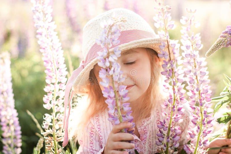 Mała śliczna dziewczyna obwąchuje lupine kwiatu przy zmierzchem zdjęcia stock