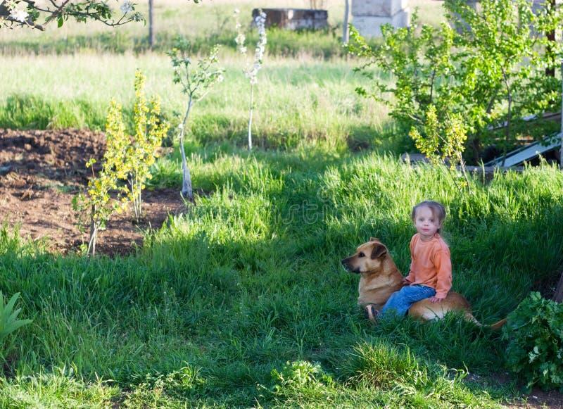 Mała śliczna dziewczyna siedzi okrakiem na duży pies obraz royalty free