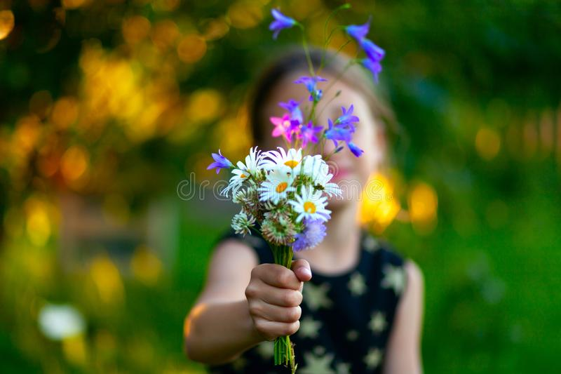 Mała śliczna dziewczyna z bukietem wildflowers Dziecko daje kwiaty mama Zamyka w górę widoku na ręce z teraźniejszością obrazy stock