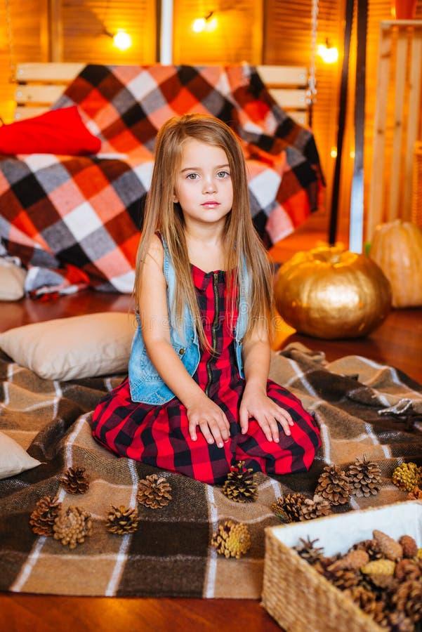 Mała śliczna dziewczyna z długim kędzierzawym włosy blisko bani w czerwieni w czerwonej w kratkę koszula i huśtawki obraz royalty free