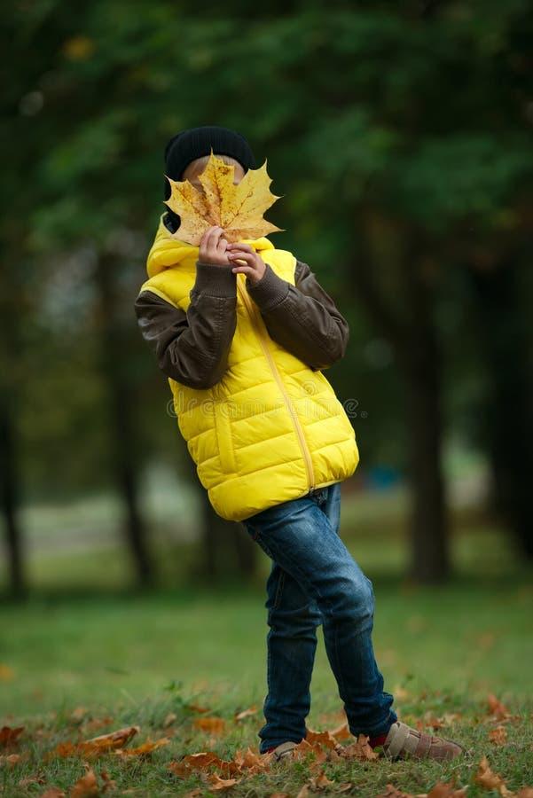 Download Mała śmieszna Chłopiec W Jesień Liści Portrecie Obraz Stock - Obraz złożonej z szczęśliwy, liść: 57671635
