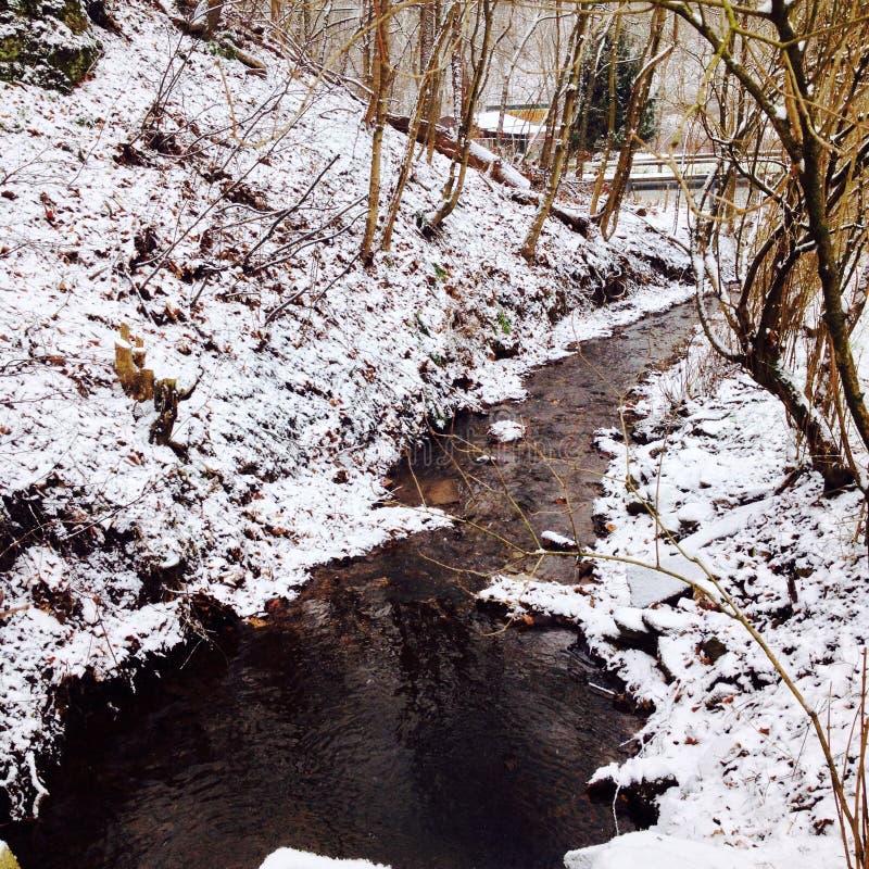 Mała śnieżna zatoczka w zimie zdjęcie stock