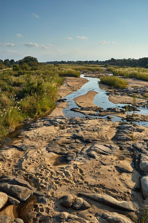 Mała Afrykańska rzeka obrazy stock