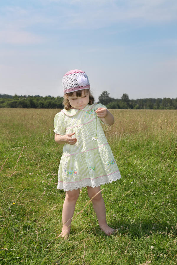 Mała bosa dziewczyna bawić się z rumiankiem przy zieloną łąką obrazy stock