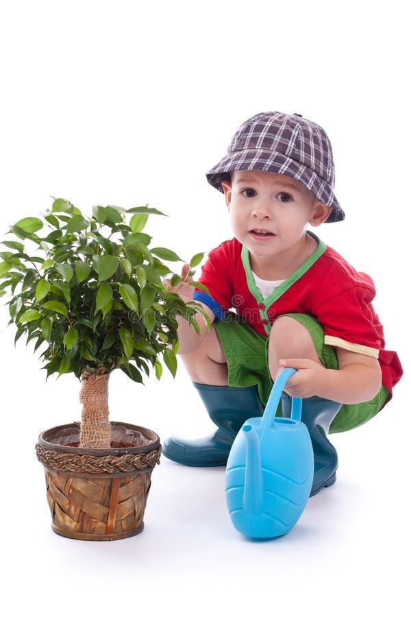 mała chłopiec ogrodniczka zdjęcia royalty free