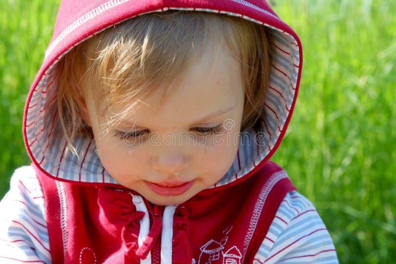 mała czerwona jazda hood fotografia stock