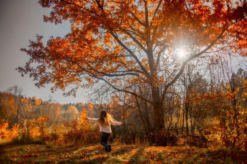 Mała dziewczynka bawić się pod czerwonym dębem zdjęcia royalty free